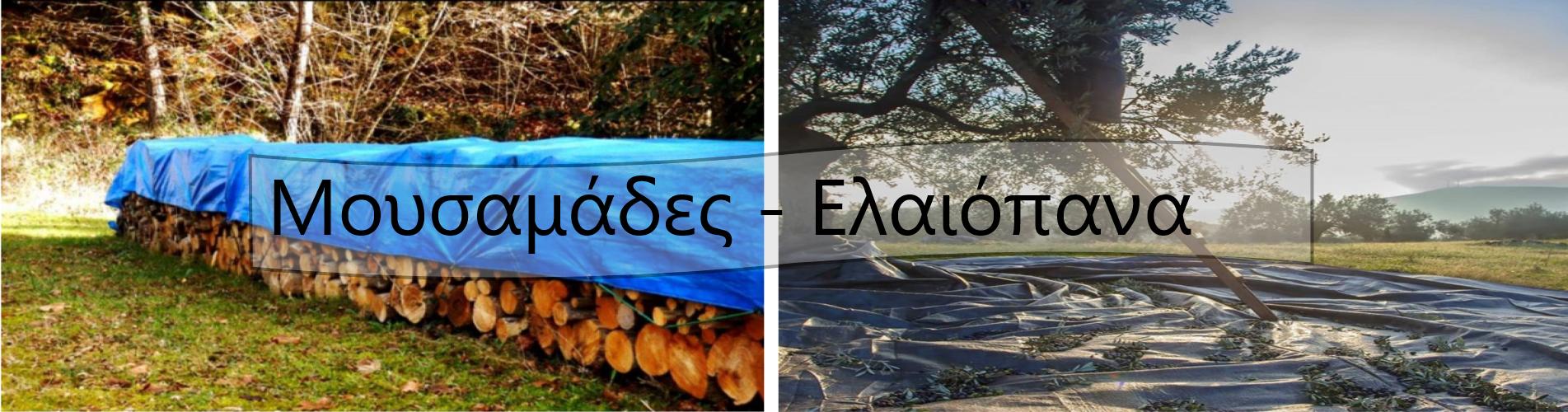 ΜΟΥΣΑΜΑΔΕΣ - ΕΛΑΙΟΠΑΝΑ